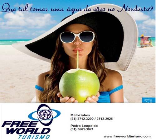 FREE WORLD TURISMO BANNER 500 X 450