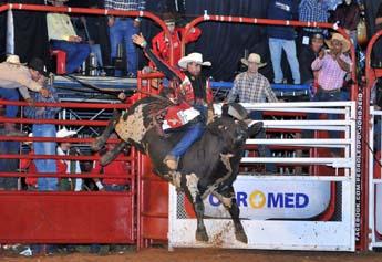 Emoção na arena com o rodeio em touros e cavalos