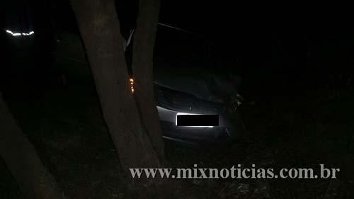 Um dos carros bateu em uma árvore na beira da estrada