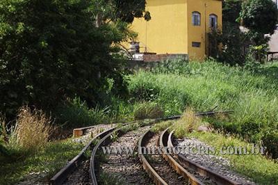Mato alto em alguns trechos da ferrovia serve de esconderijo de bandidos